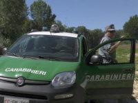 Opere abusive nel Parco Nazionale. Scatta l'abbattimento per una costruzione a San Giovanni a Piro