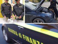 """Controlli della Finanza nel Lagonegrese e sulla """"Fondo Valle Noce"""".Sequestrata droga,29 persone nei guai"""