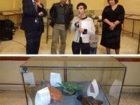 Giornata del Contemporaneo. A Polla la mostra del laboratorio di argilla promosso da Nova Civitas
