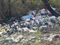 """Rifiuti abbandonati illecitamente a Monte San Giacomo. Il Sindaco: """"Ennesimo atto di inciviltà"""""""