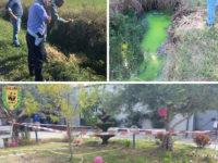Scarico illegale di rifiuti liquidi a Capaccio Paestum. Sequestrato caseificio e denunciate due persone