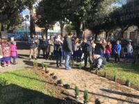 A Sant'Arsenio la piantumazione di un albero per ogni bambino nato nel 2018