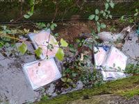 Teggiano: ignoti abbandonano confezioni intere di prosciutto cotto in una cunetta