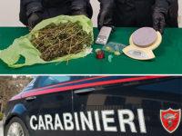 Scoperto con 210 grammi di marijuana e dosi pronte per essere spacciate. Arrestato 25enne di Vibonati