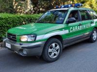 Controlli agli impianti di stoccaggio rifiuti in Basilicata. 7 denunciati, 25mila euro di sanzioni