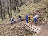 """L'ira degli operai forestali di """"Vie Blu"""" del Potentino:""""Avanziamo dei soldi, dal Consorzio nessuna risposta"""""""