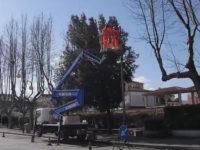 A Montesano lavori di adeguamento della pubblica illuminazione con l'innovativa luce bianca a led