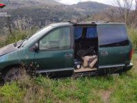 Scoperti veicoli abbandonati in aree boscate tra Sapri, Padula e Buccino. Sanzioni per i proprietari