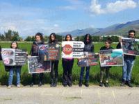 """""""No alla mattanza di agnelli"""". Attivisti vegani protestano pacificamente ad Atena Lucana"""