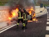 Paura lungo l'A2 del Mediterraneo. Auto prende fuoco tra Padula e Lagonegro