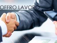 Azienda leader del Vallo di Diano ricerca figura professionale specializzata
