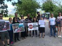 Atena Lucana: attivisti vegani fermano camion davanti ad un macello per accarezzare gli animali