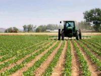 Aziende lucane in crisi per la siccità. Dalla Regione maggiorazione dell'assegnazione di carburante agricolo