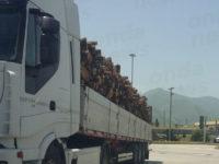 Camion sovraccarico di legna in A2 a Sala Consilina.Scattano controlli e sanzioni della Polizia Stradale