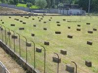 """Sanza: balle di fieno con l'erba cresciuta nello stadio. Il sindaco:""""Serviranno per una manifestazione"""""""