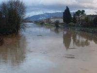 """Vegetazione nel fiume Tanagro, """"Questa è un'emergenza!"""" – Lettera aperta di Paolo Manzione"""