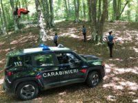 Si perdono nei boschi del Parco Nazionale dell'Appennino Lucano. Due donne soccorse dai Carabinieri