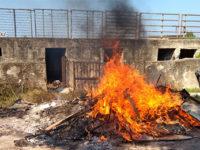 Scoperti roghi di rifiuti speciali ad Agropoli e Capaccio Paestum. Denunciate tre persone