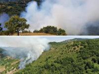 Vasto incendio a Marsico Nuovo. Distrutti diversi ettari di macchia mediterranea