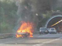 Paura sulla Cilentana. Auto in fiamme, i Vigili del Fuoco evitano il peggio