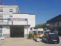 Colpito al volto dal calcio di una mucca, uomo di Sanza finisce in ospedale