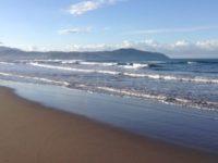 """""""Lo scarico abusivo di reflui rende il mare impraticabile"""". La denuncia di Paestum Sea Life"""
