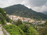 Ratti nel territorio di Olevano sul Tusciano. I consiglieri di minoranza chiedono intervento urgente