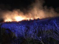 Fiamme nella Zona Industriale di Battipaglia. Incendio spaventa la città, oggi visita del ministro Costa