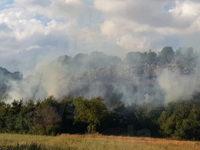 Incendio a Polla nei pressi del cimitero. In fumo diversi ettari di vegetazione