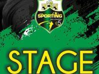 """Calcio a 5. Il 9 agosto Stage per il Settore Giovanile dello """"Sporting Sala Consilina"""" alla DFL Lamura"""