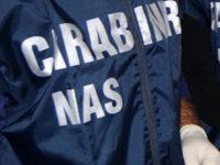 Carne e pesce non tracciabili, scatta il sequestro dei NAS in due ristoranti a Vibonati e Salerno