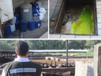 Reflui smaltiti illecitamente nella Piana del Sele. Sequestrate alcune aree e denunciati i responsabili