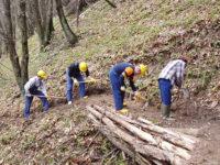 """Gli operatori forestali lucani chiedono certezze alla Regione Basilicata. """"Spettanze sempre in ritardo"""""""