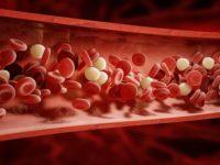 Farmacia 3.0 – I gemmoterapici vengono in aiuto in caso di piastrine basse