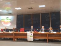 Università Salerno.Green economy e sostenibilità al centro del convegno promosso dalla Banca Monte Pruno