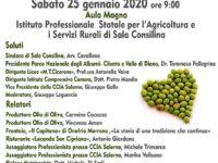 Sala Consilina: domani all'Istituto Agrario si discute di olio d'oliva con esperti del settore