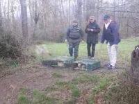 Ripopolamento della fauna selvatica. Liberati più di 1000 fagiani a sud di Salerno e nel Vallo di Diano