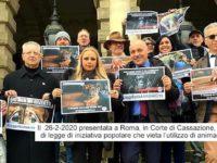 Proposta la legge che vieta l'uso di animali nei circhi, tra i firmatari Vincenzo Ferrara di Padula