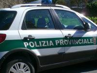 Deposito di rifiuti pericolosi a Salerno. Scatta il sequestro della Polizia Provinciale
