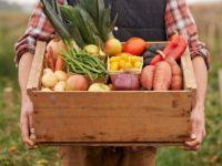 """""""Prodotti delle imprese agricole lucane per famiglie in difficoltà"""". L'idea dell'assessore regionale Fanelli"""