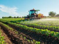 """Agricoltura. Al via il Fondo Covid-19 da 100 milioni previsto dal """"Cura Italia"""" per il comparto primario"""