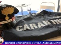 Prodotti ittici non tracciabili. Sequestro dei Carabinieri del Reparto Tutela Agroalimentare di Salerno