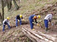 """Ambiente.In Basilicata a giugno riapriranno i cantieri forestali,Fanelli:""""Stanziati dalla Regione 15 milioni"""""""