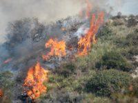 Prevenzione incendi boschivi. A Sala Consilina sanzioni fino a 10mila euro per i trasgressori dell'ordinanza