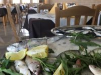 Al ristorante FAMILY di Polla ogni venerdì tanti gustosi piatti a base di pesce