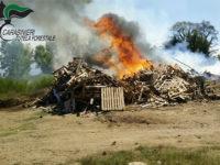 Rifiuti, pallets e materiale di risulta a fuoco sulla litoranea di Pontecagnano. Denunciato il responsabile