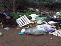 Smaltimento illecito di rifiuti nell'area protetta del Parco Nazionale. Scattano sanzioni dai Forestali