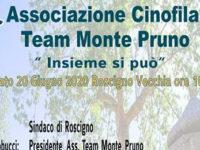 """Roscigno: il 20 giugno l'incontro """"Insieme si può"""" dell'Associazione Cinofila Team Monte Pruno"""