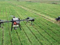 Agroalimentare. Al via bando per l'acquisto di macchinari, 265 milioni di euro per l'innovazione sostenibile