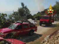 Vasto incendio a Bella. In fiamme un bosco, intervengono i Vigili del Fuoco